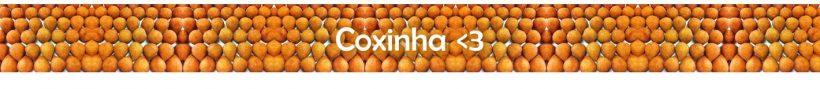 coxinha-martins-com-br-fritadeiras