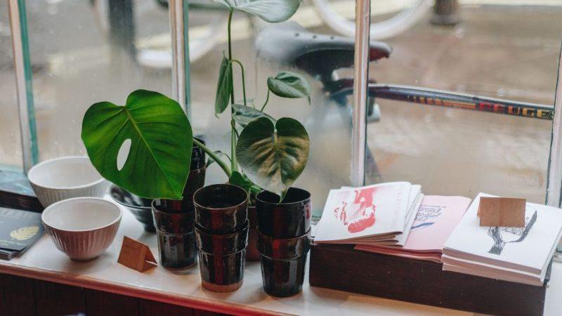 Vitrine vista de dentro, com vasos de plantas, cadernos de brochura e potes de cerâmica.