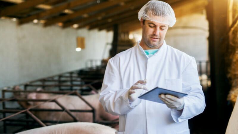 Veterinário atendendo em uma fazenda se comunicando com outra pessoa através de aparelho celular e tablet.