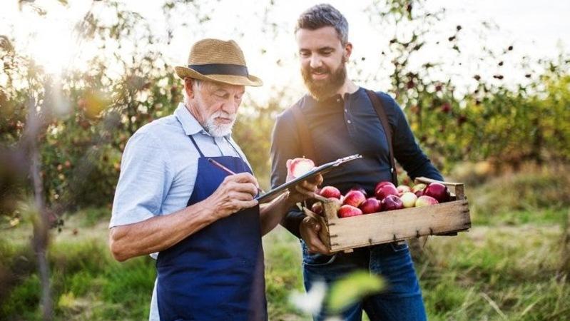 homem idoso de barba branca usando avental azul e chapéu de palha segurando prancheta e uma maçã mordida ao lado de homem usando blusa de manga comprida segurando uma caixa cheia de maçãs