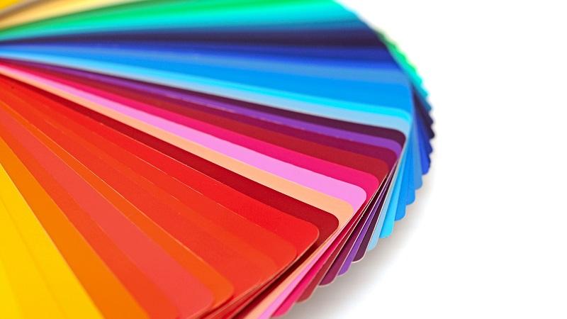 Paleta de cores em fundo branco